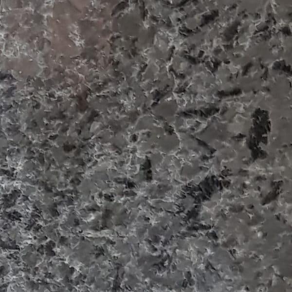 Angola black coral