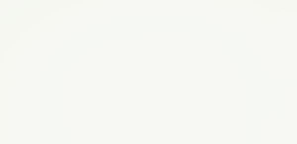 DEKTON Uyuni (slab)